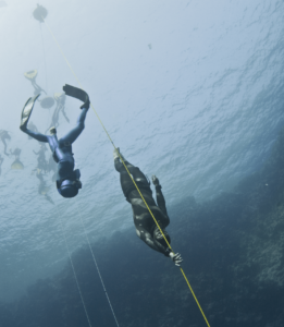 Freediving Competitions