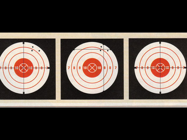 SCOPED RIFLE SIGHT-IN MADE EASY