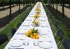 Long dinner table table