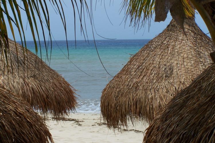Beach at Occidental Grand Cozumel