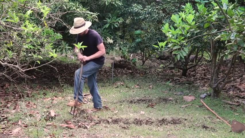 Dig Your Survival Garden