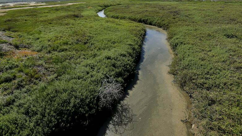 Raw Sewage From Mexico Leaking Into California