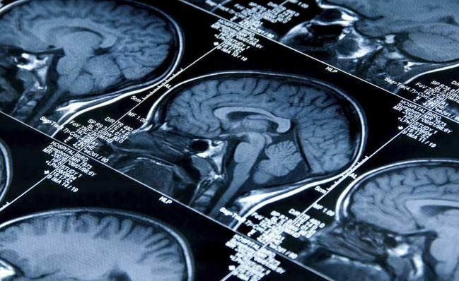 """New Study Claims Human Brains are Capable of """"Mental Time Travel"""""""