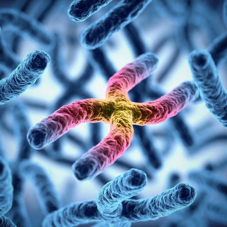 OB Education - Chromosomal Screening