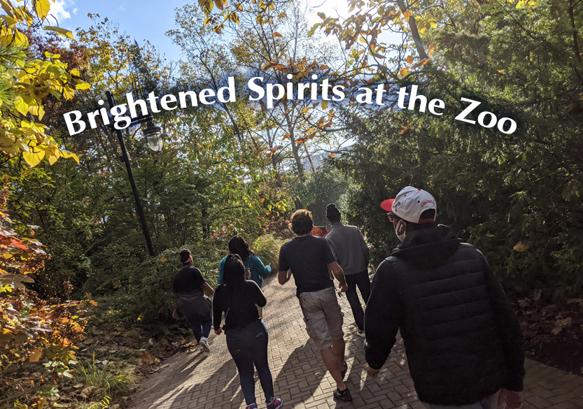 Brightened Spirits at the Cincinnati Zoo