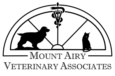 MOUNT AIRY VETERINARY ASSOCIATES