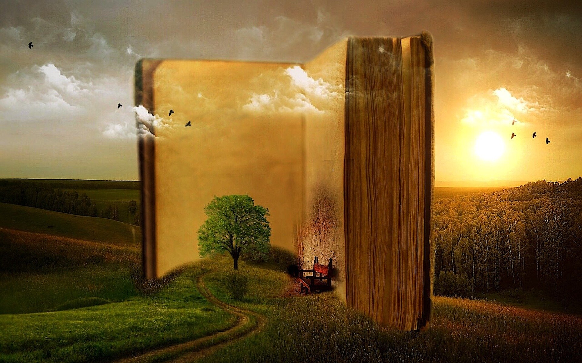 Picture of a book with story elements emerging from the pages