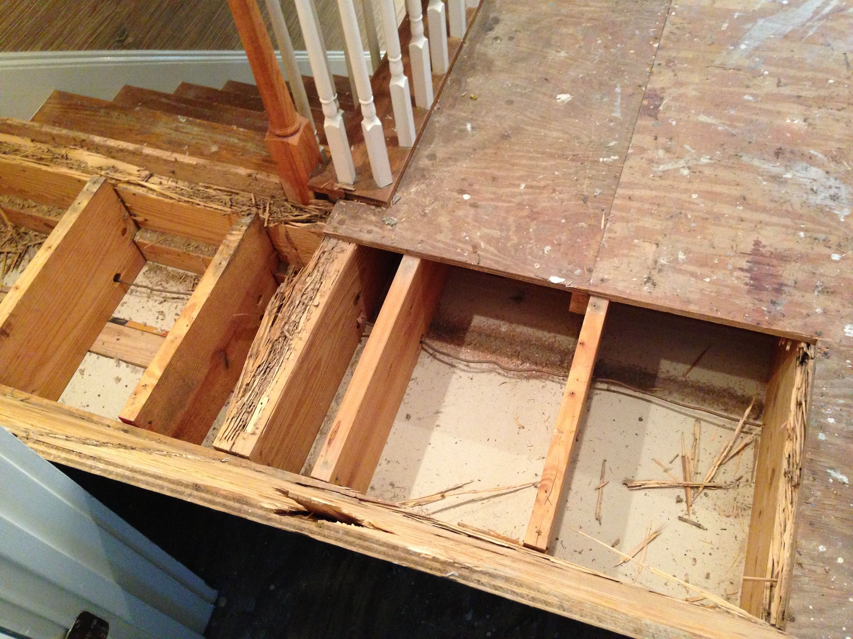 This subflooring had termite damage underneath it. The damaged wood had to be replaced for the integrity of the new floors being installed.