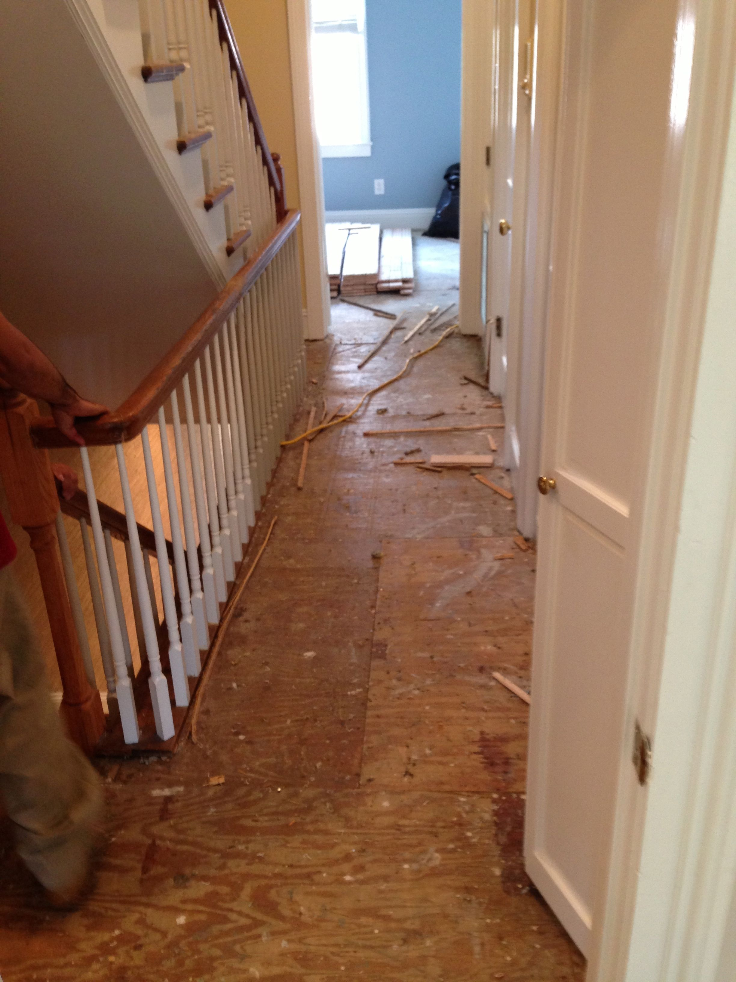 A photo of plywood subflooring prior to installation of new red oak hardwood flooring.