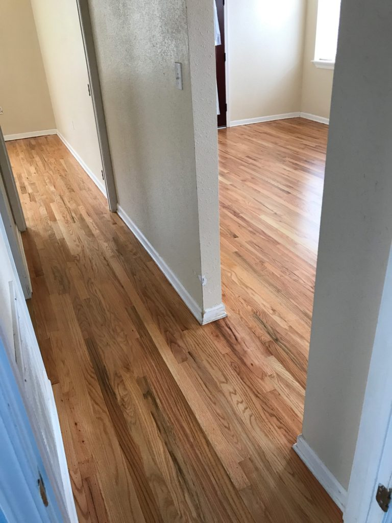 Pictured is a hallway with red oak floors with a natural finish. The contrasting colors in the wood grain are eye catching with shades of red tones, browns, and creamy white.