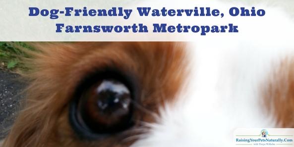Dog-Friendly Toledo, Ohio Parks Dog-Friendly Waterville, Ohio: Farnsworth Metropark