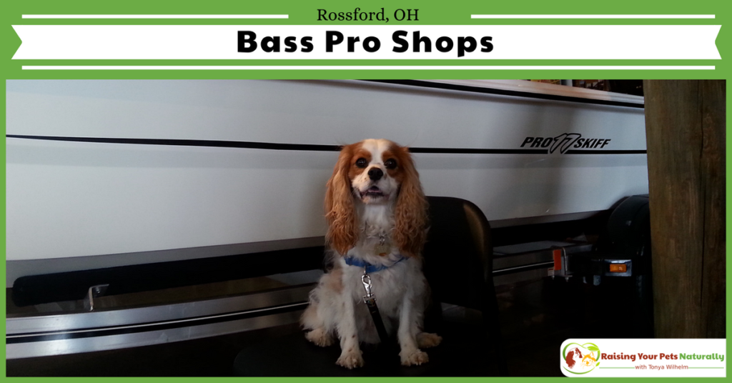 Dog-Friendly Ohio Stores and Activities, Rossford, Ohio #raisingyourpetsnaturally