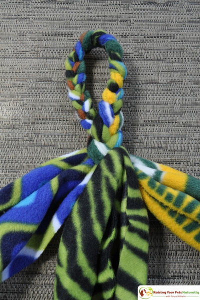 DIY for Dogs. How to make a dog tug of war toy out of fleece. Learn how easy it is to make a fun toy for dogs. #raisingyourpetsnaturally