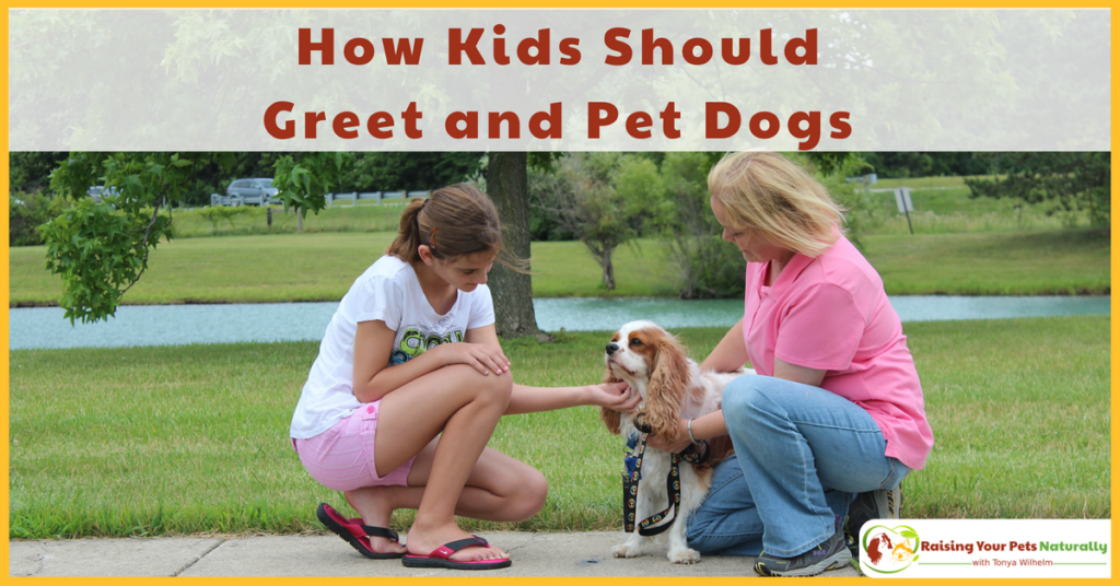 Kids and dogs can be amazing friends. Learn how to teach your child to greet, pet and say hello to dogs. #raisingyourpetsnaturally