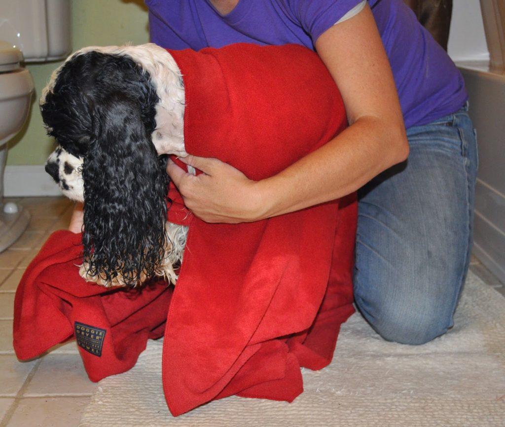 Aquis Doggie Dryer Micro Fiber Towel