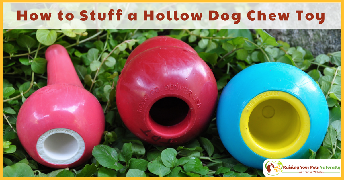 Learn How to Stuff or Fill a Hollow Dog Chew Toy and How to Fill a Kong. #raisingyourpetsnaturally