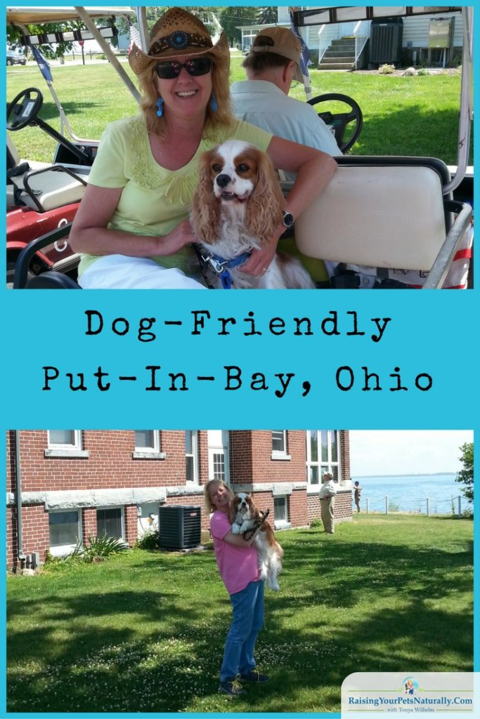 Dog-Friendly Day Trips: Dog-Friendly Put-In-Bay, Ohio. Fun activities, stores and cafes all at Put-In-Bay, Ohio.