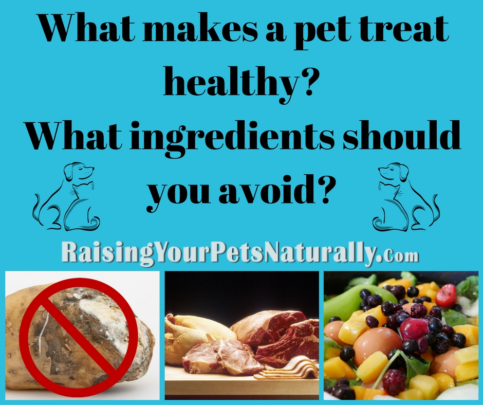 Do you know how to spot healthy dog treats? Are you sure all natural dog treats are healthy? Here are my top tips and 10 items to avoid. #raisingyourpetsnaturally
