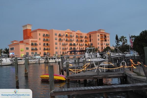 Best beach condos in Florida
