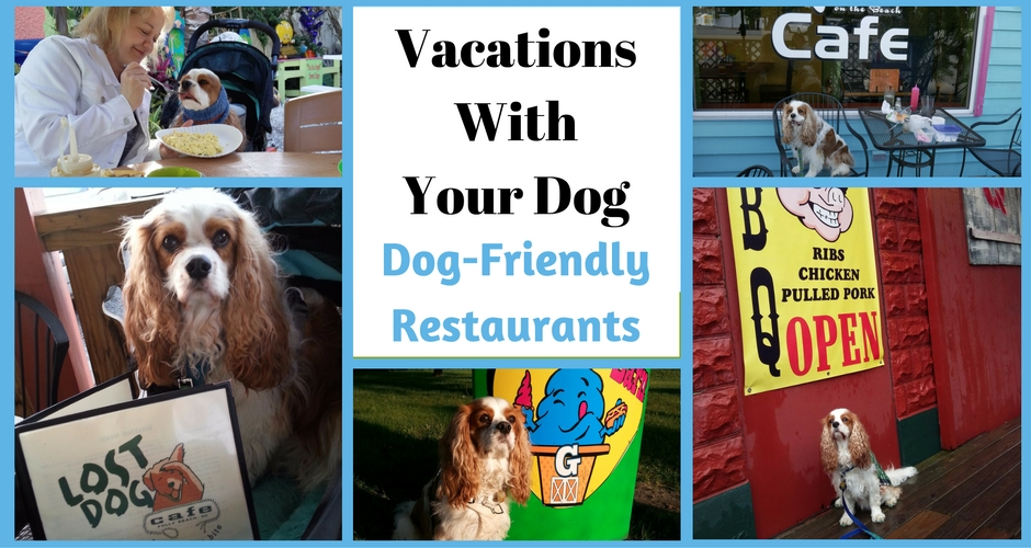 After a hard day of sightseeing with your dog, you may be a bit hungry. Here are some of our favorite dog-friendly restaurants. Enjoy and save a bite for your pooch.