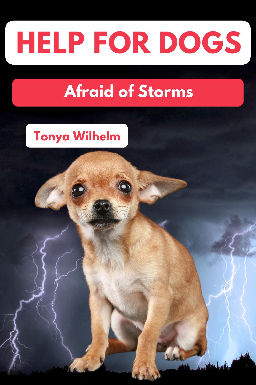 Dog Behavior, Scared Dog, Fearful Dog Training: Dog Scared of Thunder