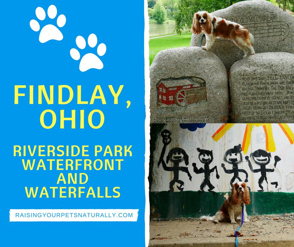 Dog-Friendly Findlay, Ohio