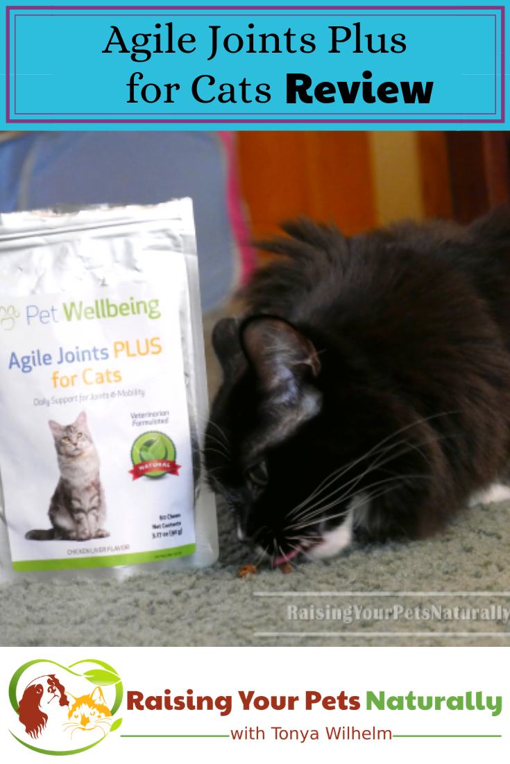 Cat Supplements, Joint Supplements for Cats   Agile Joints Plus for Cats Review
