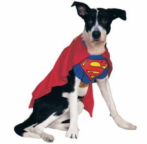 Dog Superman Costume