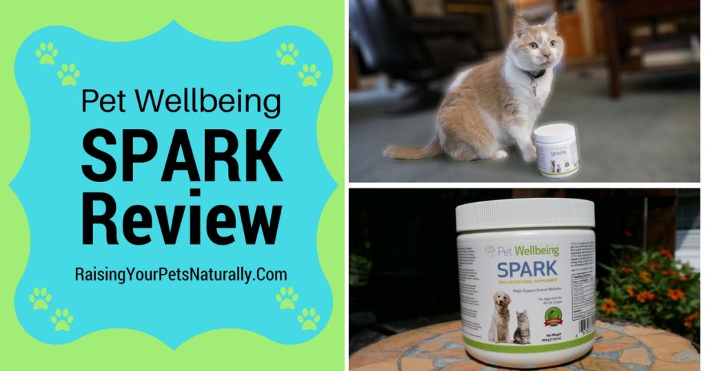 SPARK Joint Supplement Review