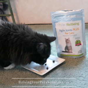 Pet Wellbeing Agile Joint Supplement for Cats