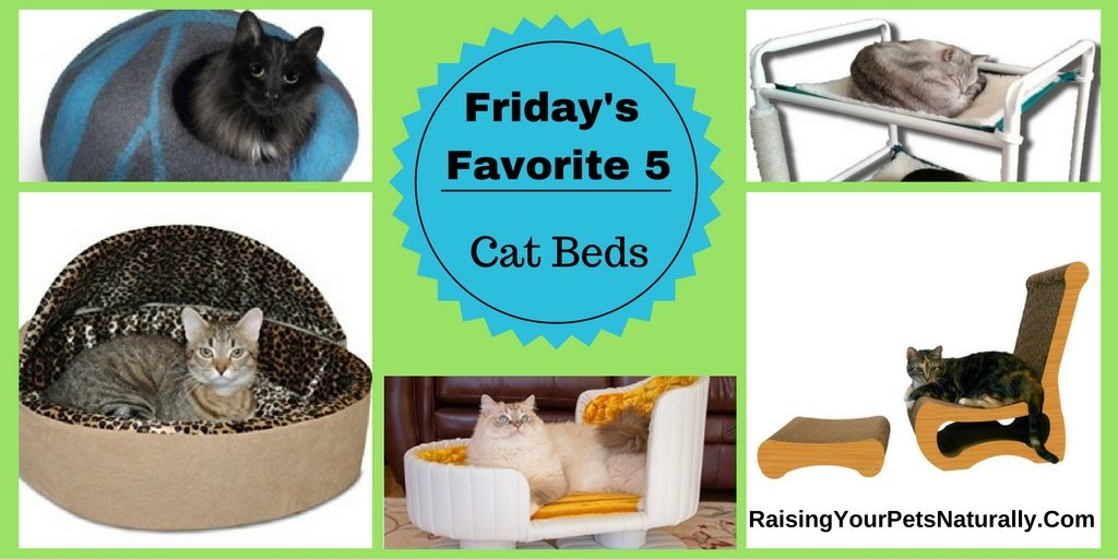 The best cat beds, cat bunk beds, heated cat beds and more.