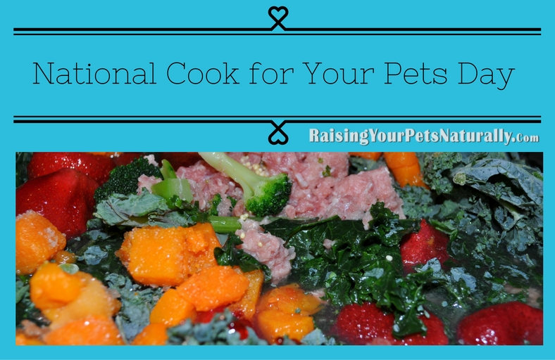 For National Cook for Your Pets Day, I thought it would be a good time to talk about people food vs. pet food. Is there a difference?