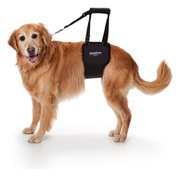 GingerLead Dog Support & Rehabilitation Harness