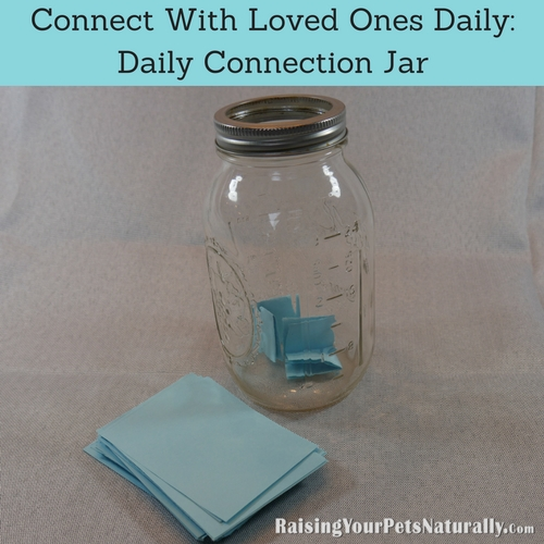 I want you to put DAILY connecting with another inside your jar. When I think of connecting with people or connecting with our pets, I think of putting away all distractions (TV, cell phones, internet) and really just being in the moment with the other person or your pet.