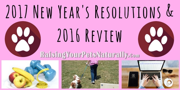 Best New Year's Resolutions