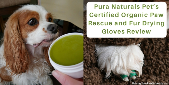 """Last month, Dexter, Nutter, and I reviewed Pura Naturals Pet's Pura-Tips Ear Cleansing System and really loved the product and the brand. When they contacted me to review their Certified Organic Paw Rescue and Fur Drying Gloves, I was all in. I love working with pet brands that put our pets' health and well-being first, instead of the company's bottom line. The brand's mission says it all. """"Our mission is simple. Pura Naturals Pet™ is dedicated to delivering the highest quality products using only the best materials the Earth has to offer."""""""