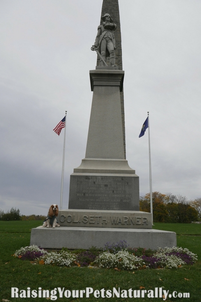 Dog-Friendly Bennington Battle Monument. During ourdog-friendly vacation to Vermont, we took a few day trips. One day we headed to Bennington, Vermont and visited theBennington Battle Monument, which is the tallest structure in Vermont.