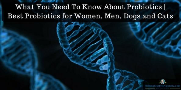 Best Probiotics for Women, Men, Dogs and Cats. Understanding Pre- and Probiotics for Dogs, Cats, and People. You know I'm a big believer in reading the ingredient labels in all our pets' products, but when I turn over a box or jar of probiotics, I'm totally confused. I'm not a microbiologist! So I asked some experts in the field of microbiology and pet health for help in understanding probiotics for pets and ourselves