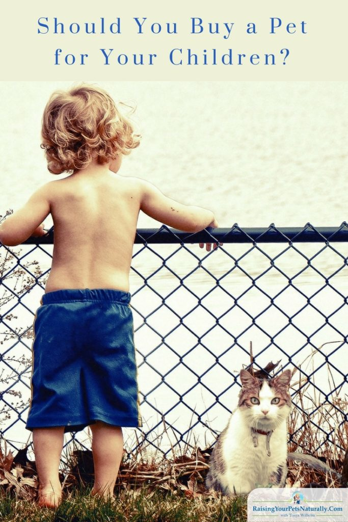 Should you buy a pet for your child? Here are a few things to consider before making this life altering decision. #raisingyourpetsnaturally