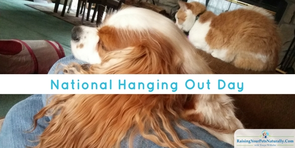 Wordless Wednesday National Hanging Out Day When you read this headline, National Hanging Out Day, what did you think of? I thought about hanging out with my dog. If you are like me, you are wrong!