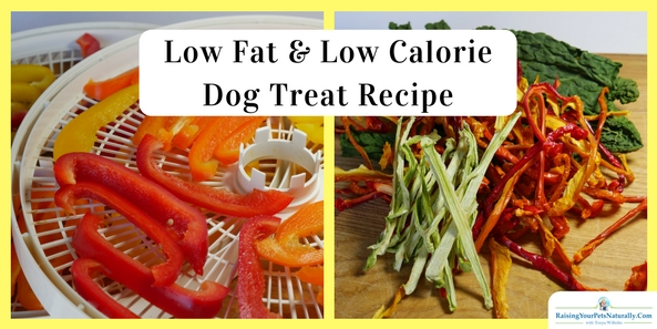 Low Fat and Low Calorie Dog Treats | Healthy Homemade Dog Treats. I want to help my dog lose weight with real food and exercise, not with a nasty, processed, low-fat dog food. #raisingyourpetsnaturally