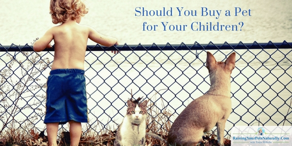 I wholeheartedly believe pets are a great way to help teach a child responsibility and caring for another living being. The friendship between a pet and child can be an amazing thing to watch flourish. My family dog was my best friend growing up. But a pet is still not the full responsibility of any child.