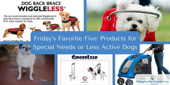 Items for special needs or senior dogs.