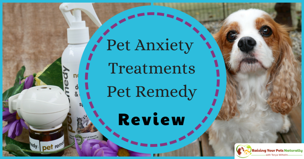 Dog and cat anxiety treatment. Pet Remedy essential oils for pet anxiety review. If you have a dog or cat with anxiety, you don't want skip this natural calming aid. #raisingyourpetsnaturally