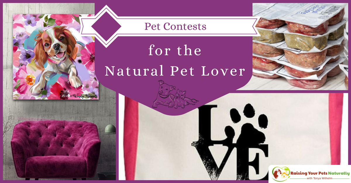 Dog and Cat Photo Contests, Pet Giveaway for the Natural Pet Lover! Don't miss out on these great prizes from the best natural pet brands on the market. #raisingyourpetsnaturally