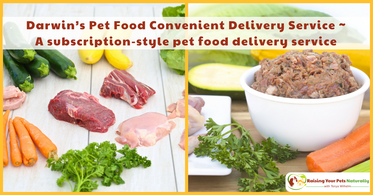 Learn about Dog and Cat Natural Raw Food Delivery Services and Subscription-Style Pet Food Delivery Services. #raisingyourpetsnaturally