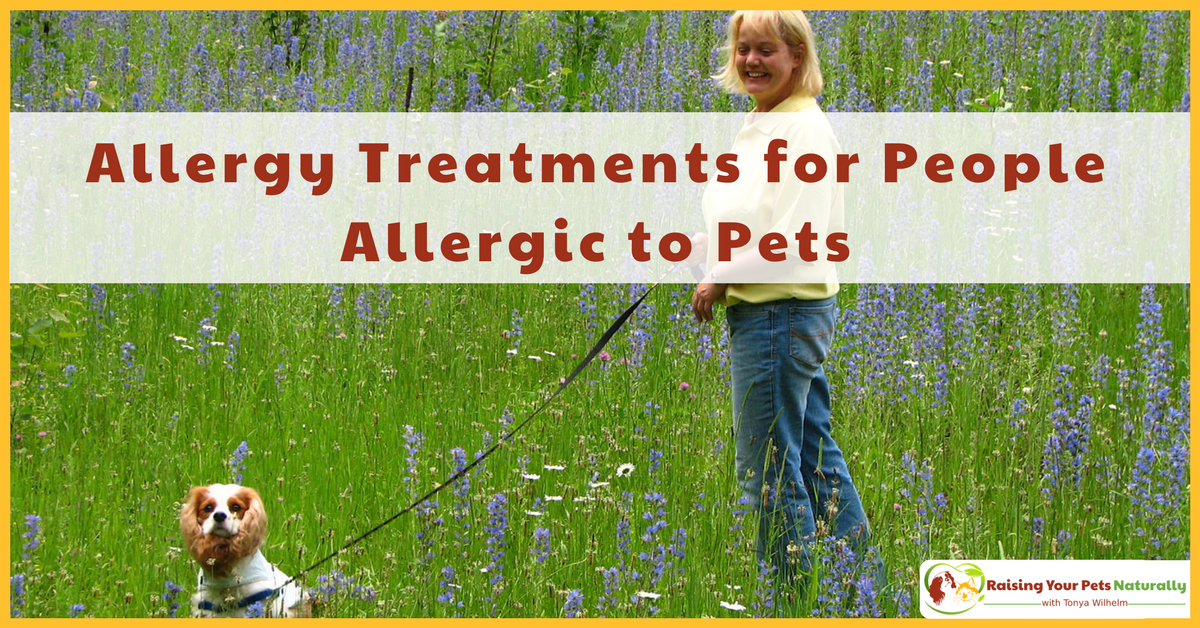 Dog and Pet Allergy Symptoms, Allergy Medicine and Natural Pet Allergy Treatment. Believe it or not, I'm allergic to dogs and probably cats! Learn about my dog allergy treatment and what you can do about pet allergies today. #raisingyourpetsnaturally