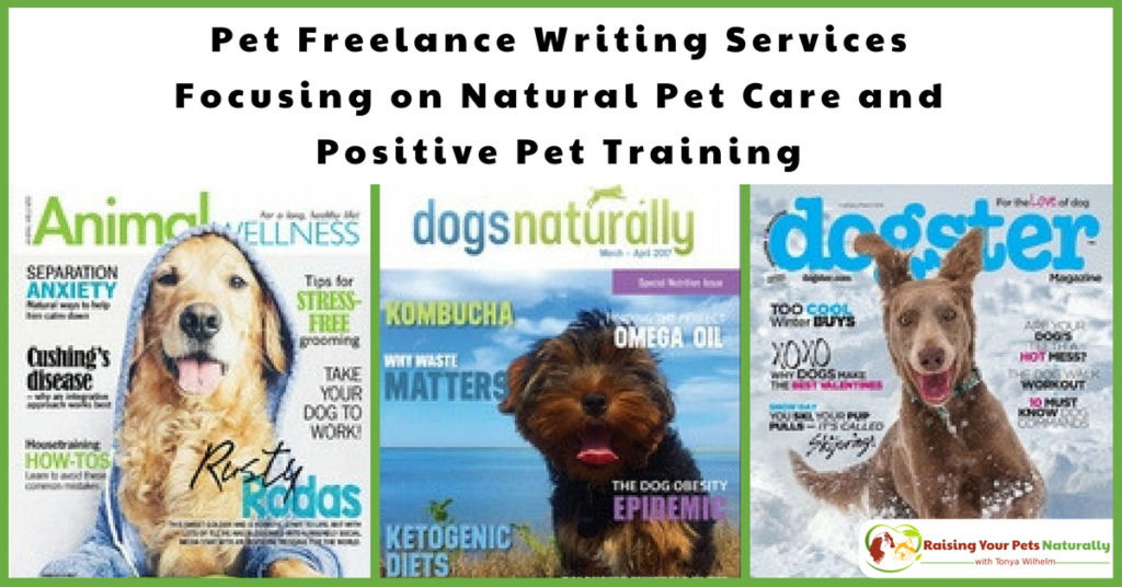 Freelance and ghost writers in the natural pet industry. Tonya Wilhelm is a natural and holistic pet care expert, pet freelance writer, and positive dog and cat behavior specialist and trainer. #raisingyourpetsnaturally