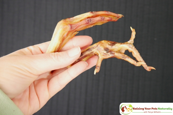 Best Dog Bones for Dogs. Healthy Companion Company's Dog Chicken Feet and Duck Feet for Dogs Review. #raisingyourpetsnaturally