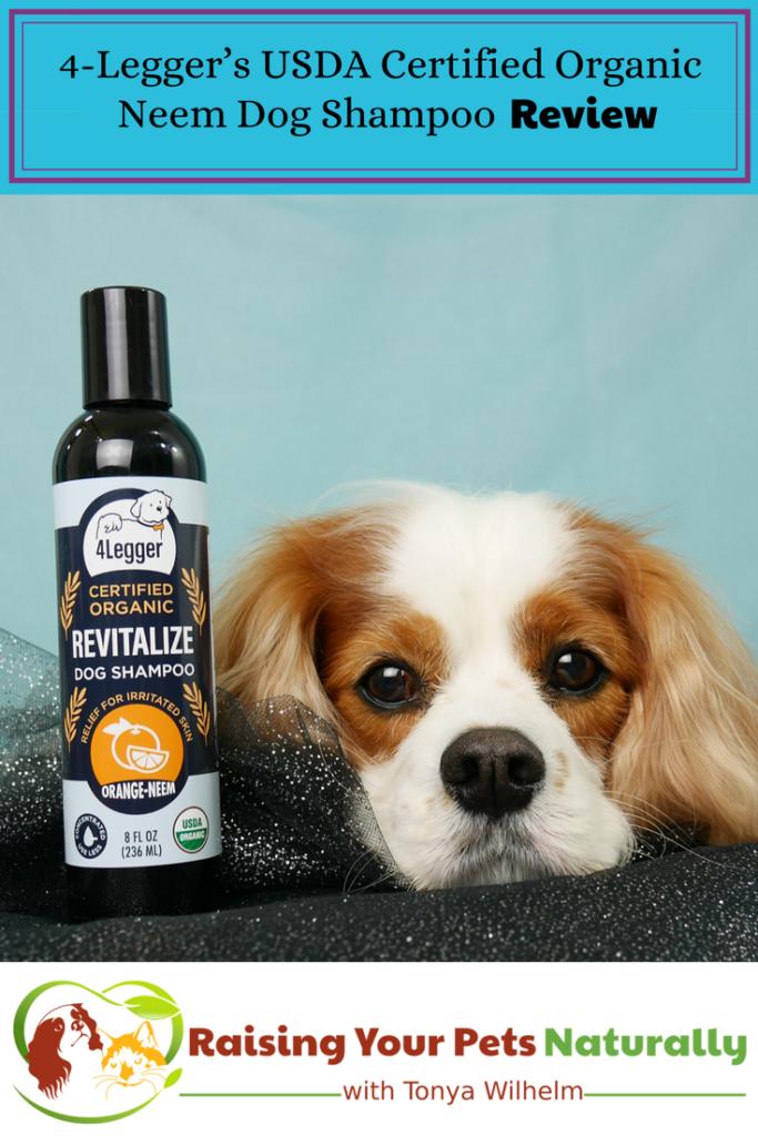 USDA Certified Organic Dog Shampoo with Organic Aloe Juice and Organic Essential Oils by 4-Legger. Organic Neem Dog Shampoo Review #raisingyourpetsnaturally #dogshampoo #dogshampooreview #bestdogshampoo #organicdogshampoo #naturaldogshampoo
